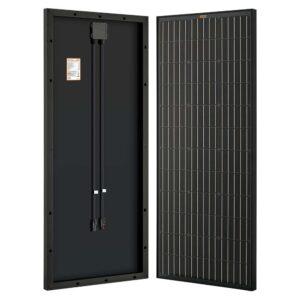 rich solar 100w black
